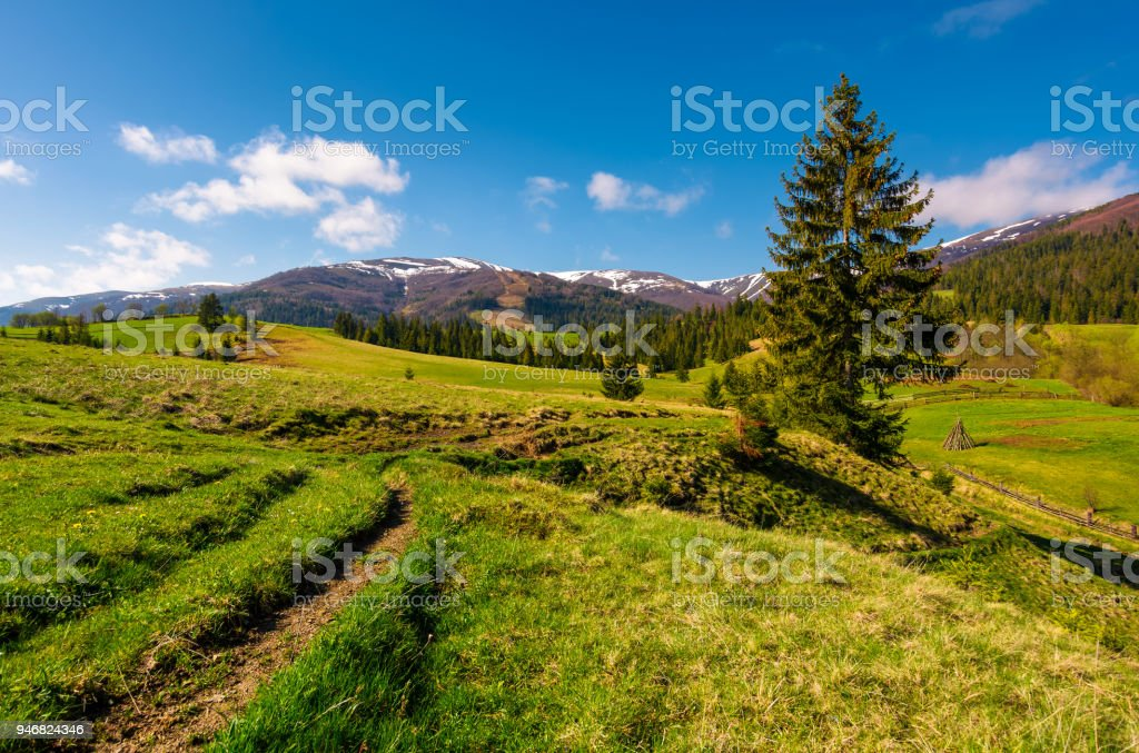 rural are in Carpathian mountains in springtime stock photo