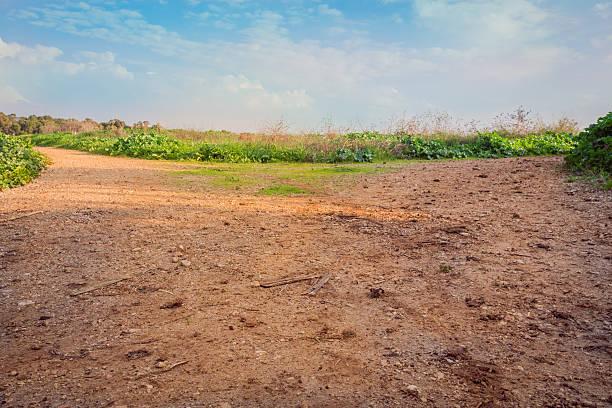 rural area dirt road - laag camerastandpunt stockfoto's en -beelden