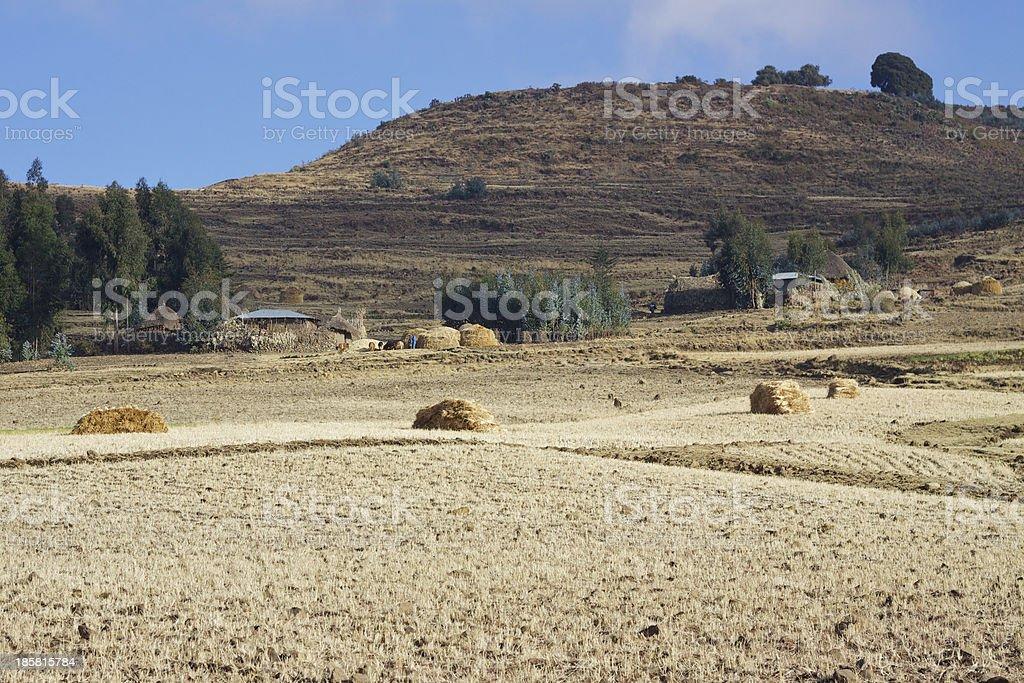 Rural area in Amhara Region royalty-free stock photo
