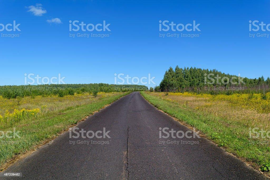 Rural asphalt road that passing through a meadow stock photo