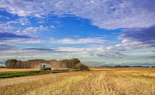 istock Rural autumn landscape in harvest season 861685518