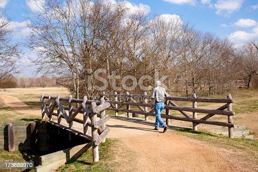 621898406 istock photo Rural bridge with man walking on it 173689970