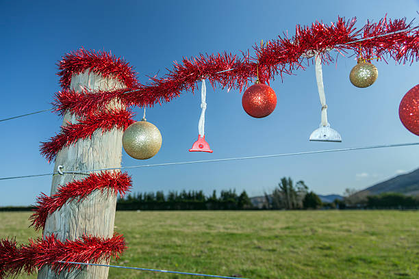 Ländliche Weihnachts-Zaun im Sommer – Foto