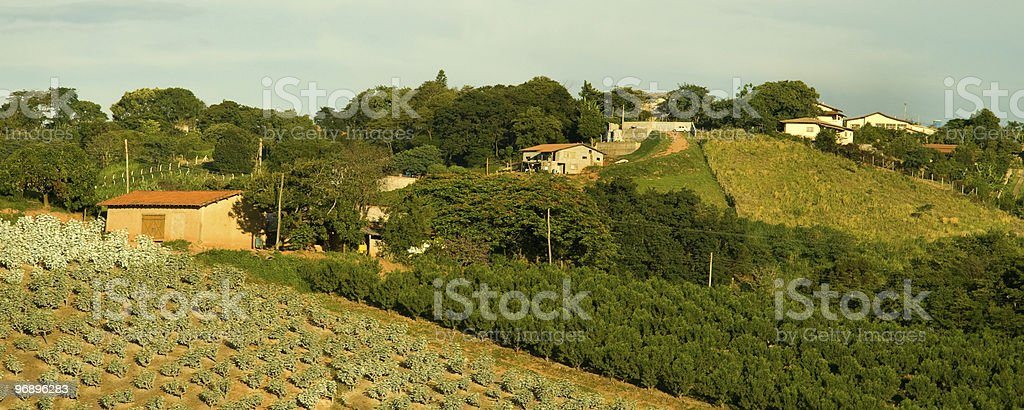 Rural country scene royalty-free stock photo