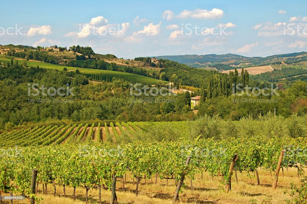Rural Countryside in the Tuscany in the amazing Italy stock photo