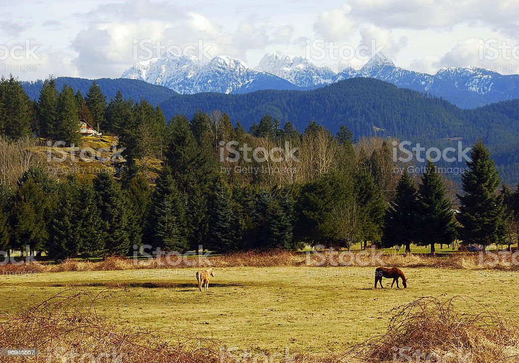 Rural Countryside of  Canada royalty-free stock photo