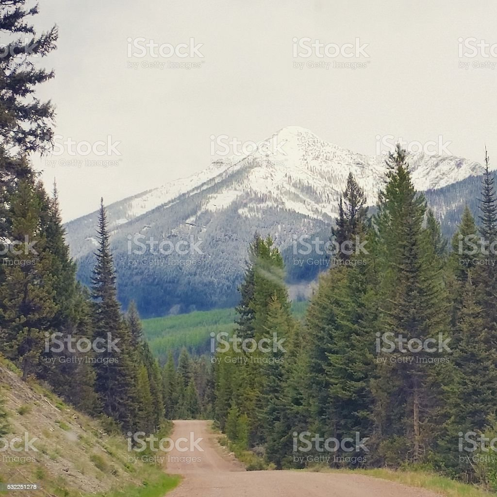 Rural Dirt Road in Montana with Glacier stock photo