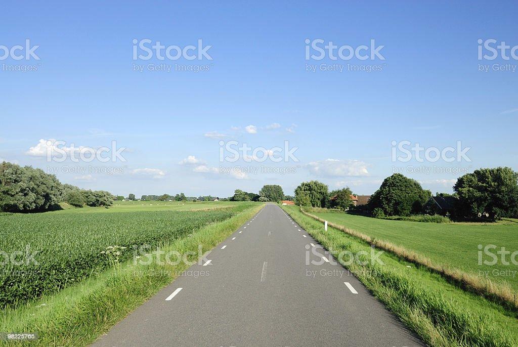 Rural dyke road in Dutch landscape royalty-free stock photo
