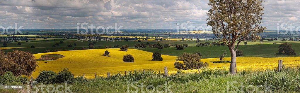 Rural farmlands panorama stock photo