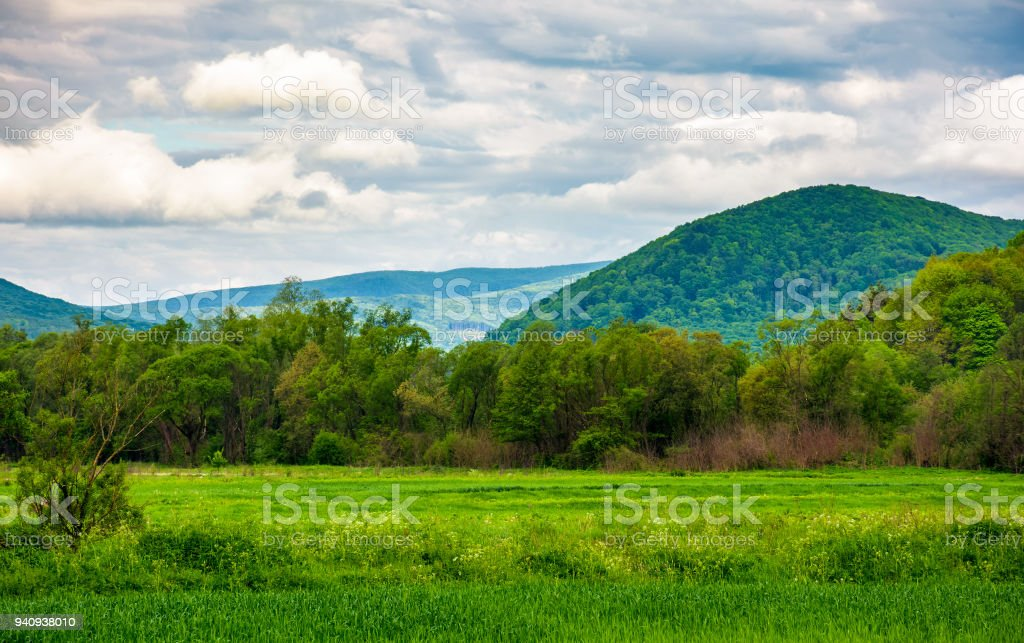rural fields on a cloudy day stock photo