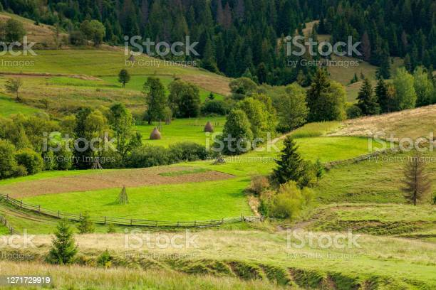 Photo of rural fields on rolling hills