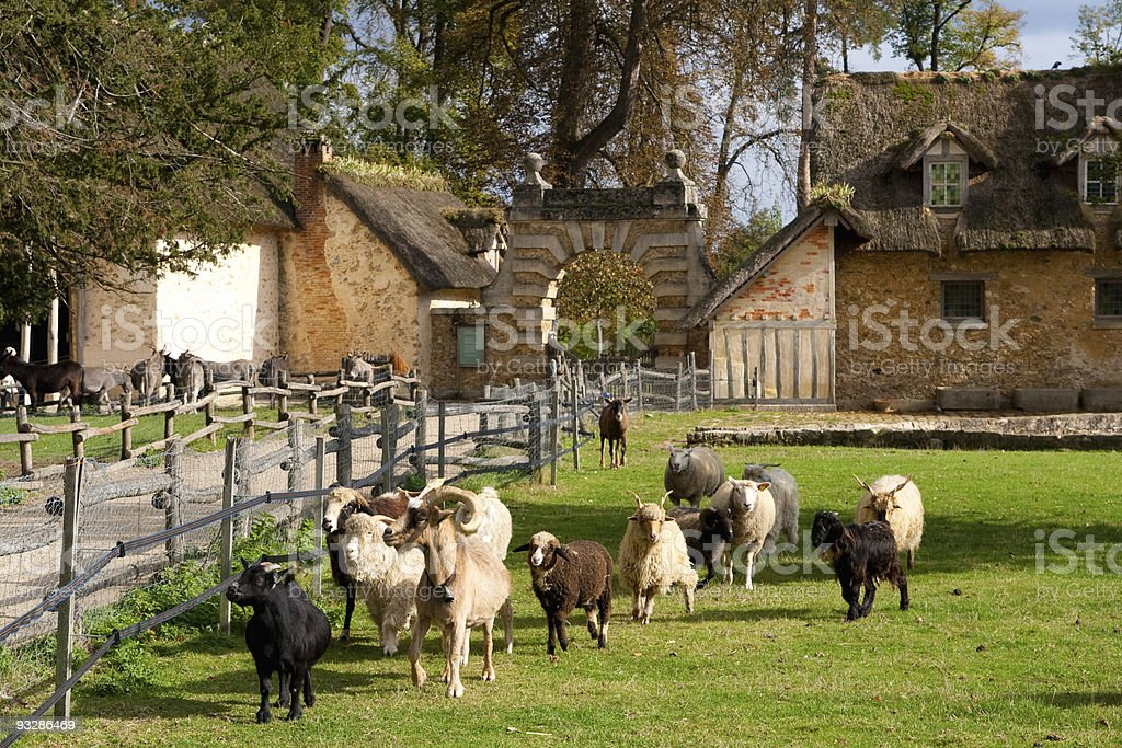 Rural France royalty-free stock photo
