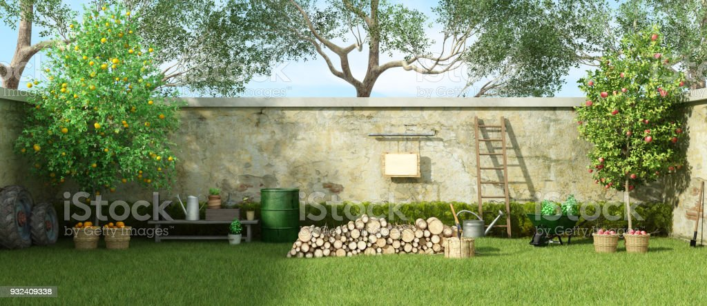 Rural garden in a sunny day royalty-free stock photo