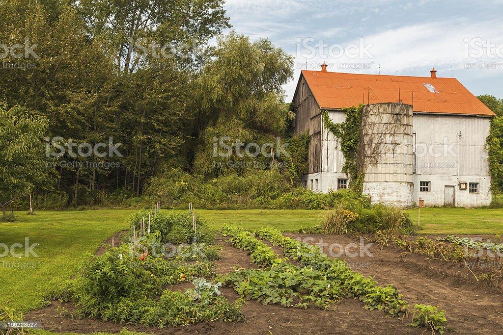 Rural Garden royalty-free stock photo