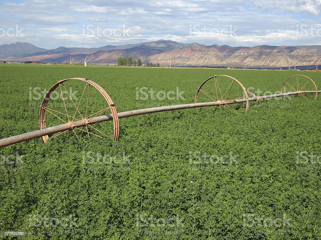 Rural Hay Field stock photo