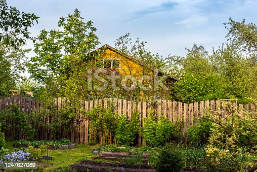 Rural houses. Typical landscape of Russian dacha.