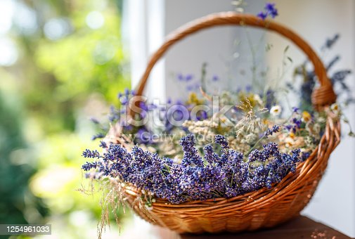 Rural idyll. Lavender flower bouquets in the basket with sunny blurred background.
