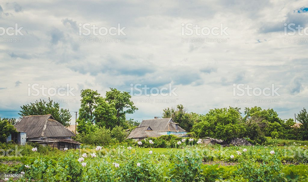 Rural idyll. Village houses and picturesque landscape stock photo