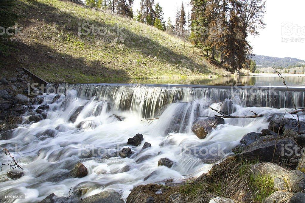 Rural irrigation dam in spring. stock photo