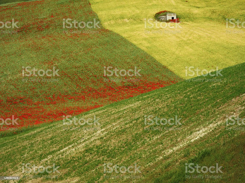 rural landscape abstract stock photo