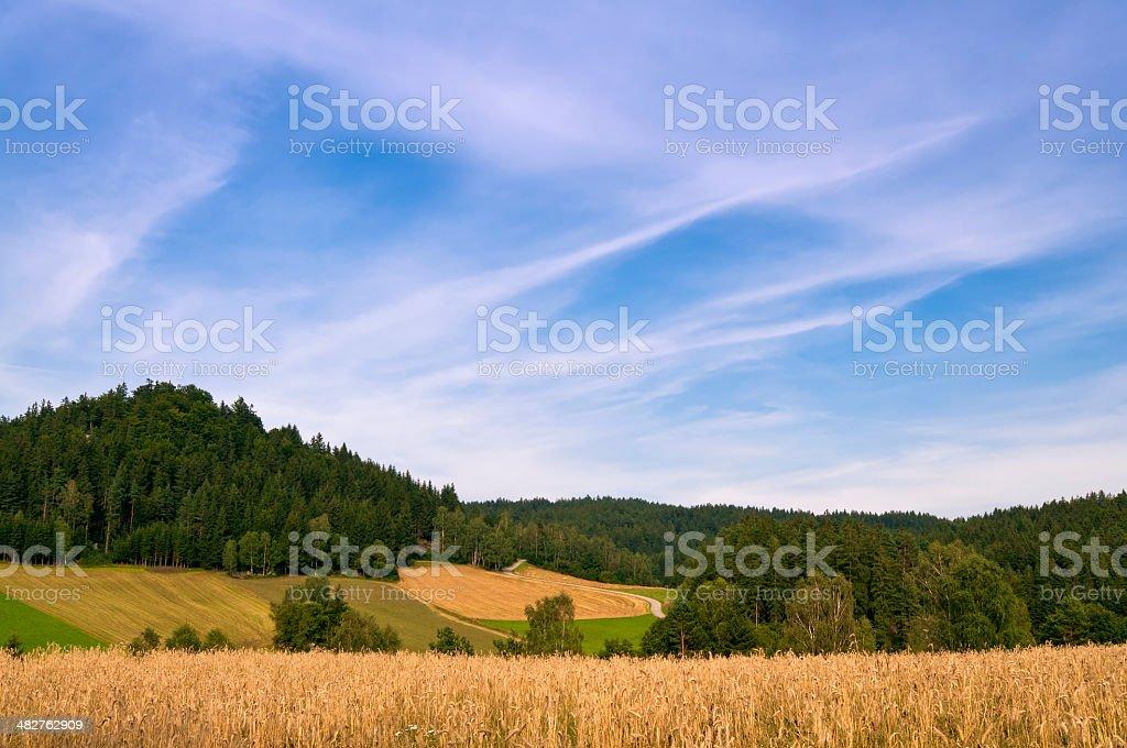 Rural landscape at harvest time in Waldviertel, Austria stock photo