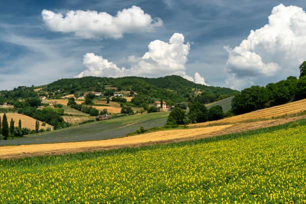 Paisagem rural no verão perto de Gubbio, Itália - foto de acervo