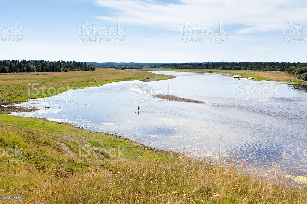 Rural landscape at summer foto royalty-free