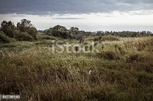 istock Rural landscape during hunting season with hunters in tall grass in rural field with dramatic sky during dusk 642795140