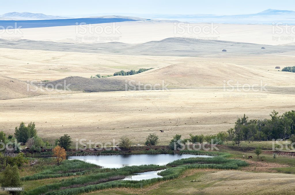 Rural landscape. Hilly steppes royalty-free stock photo