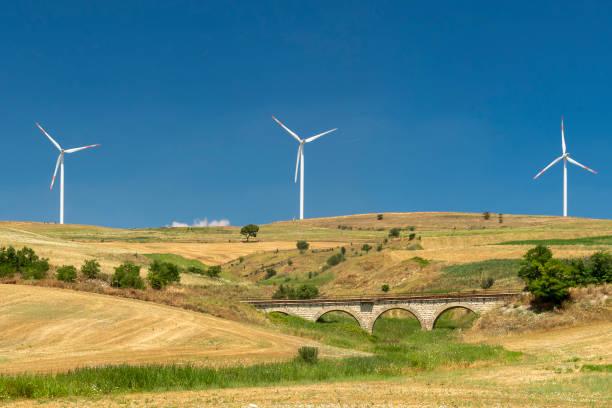 Paisagem rural em Apulia no verão - foto de acervo
