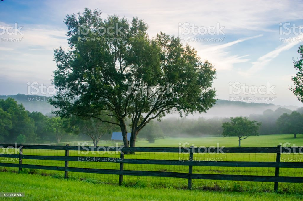Rural Landscape in Central Florida stock photo