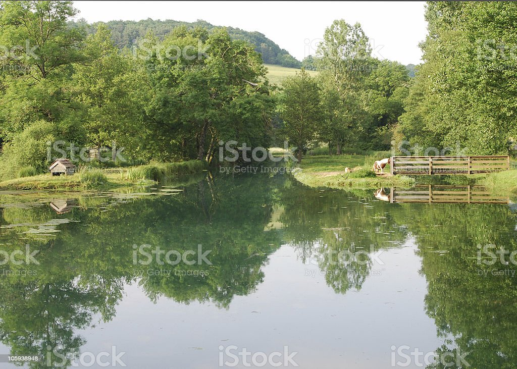 Rural landscape in Champagne, France royalty-free stock photo