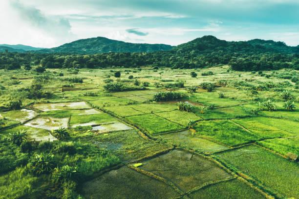 Ländliche Landschaft in Malawi, Afrika – Foto