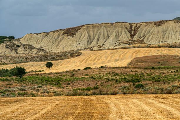 Paisagem rural na província de Matera no verão - foto de acervo