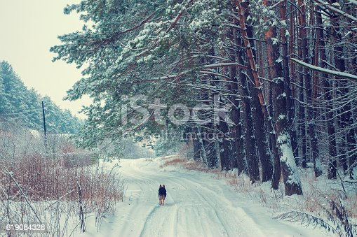 1061644120 istock photo Rural landscape in winter 619084328
