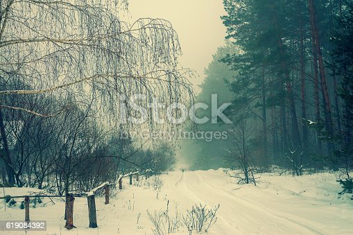 1061644120 istock photo Rural landscape in winter 619084392