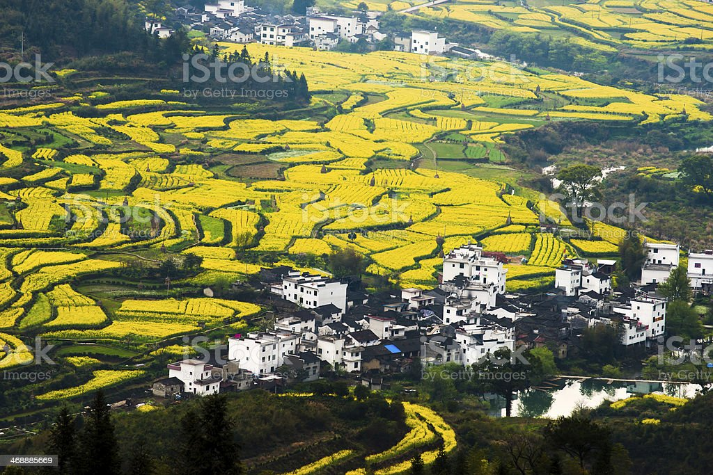 Rural landscape in wuyuan county, jiangxi province, china stock photo