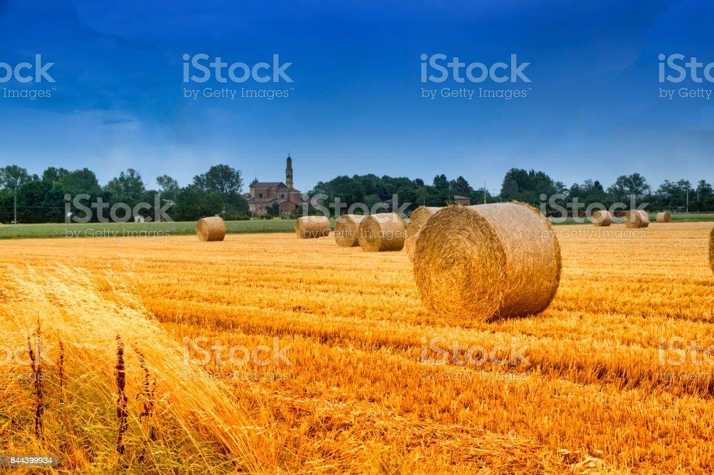 Rural landscape near Fidenza (Parma) stock photo