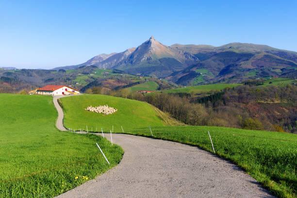paisaje rural de granja con ovejas en Lazkaomendi en Gipuzkoa con la montaña Txindoki - foto de stock