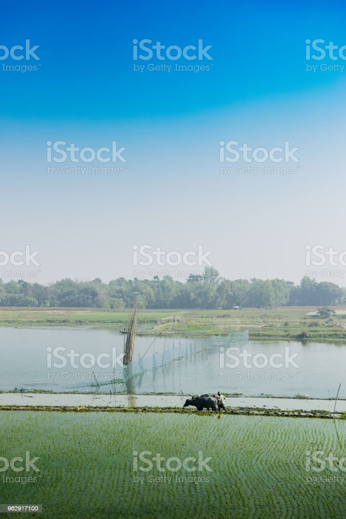 Kulturlandschaft von Indien – Foto