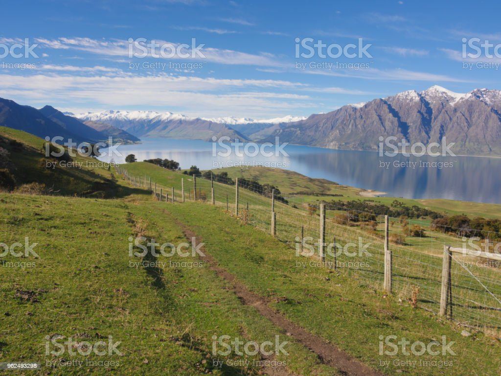 Rural landscape of New Zealand - Royalty-free Agricultural Field Stock Photo