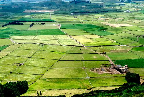 Rural landscape of Terceira Island
