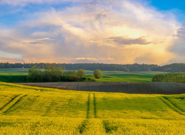 paisaje rural, panorama del campo de primavera - foto de stock