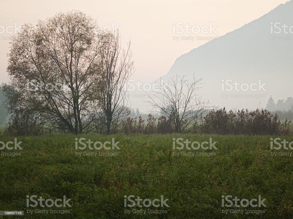 시골길 풍경 royalty-free 스톡 사진