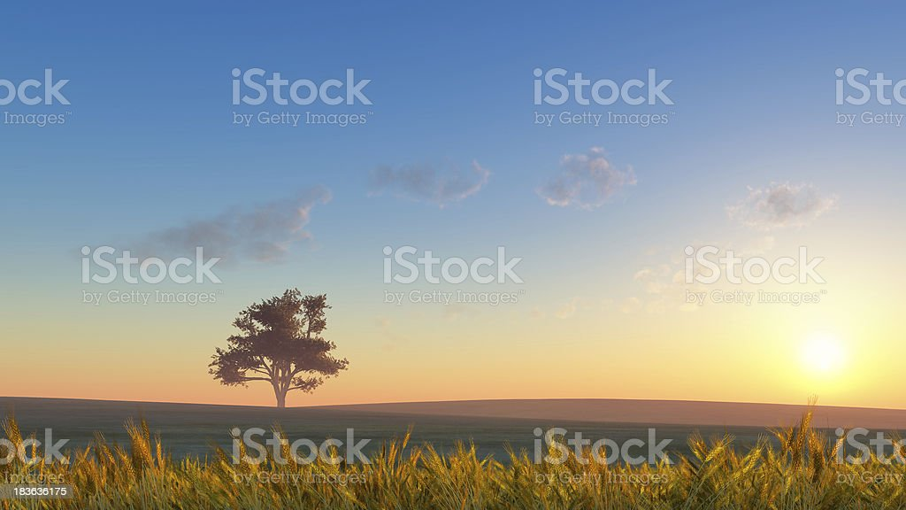 rural landscape royalty-free stock photo