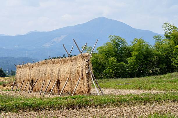 rural landscape - satoyama scenery stock photos and pictures