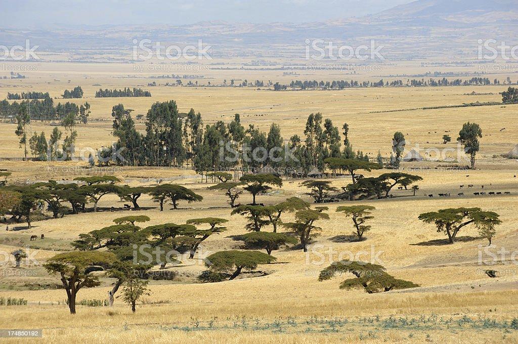 Rural landscape, South Ethiopia stock photo
