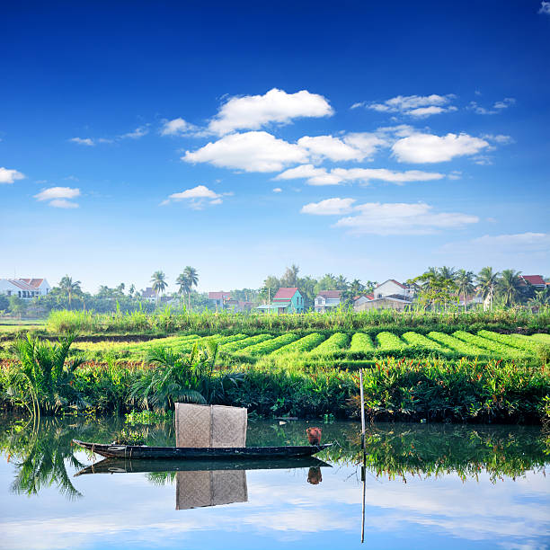 rural landscape, vietnam - mekong river stock pictures, royalty-free photos & images