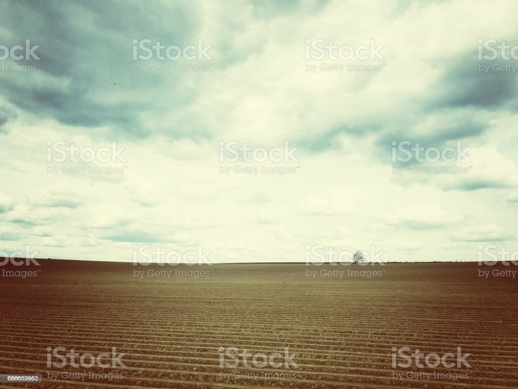 Rural landscape with a plowed field and a lonely tree at the horizon,Vlaams Brabant,Flanders,Belgium royalty-free stock photo