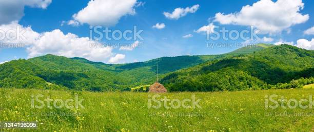 Photo of rural landscape with field and pasture on the hill
